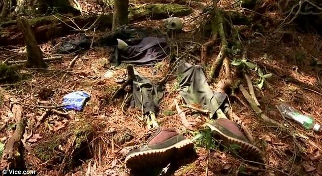 日本自杀森林:富士山每年发现百具尸体