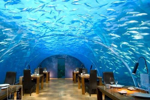 """如梦如幻 马尔代夫水下餐厅""""伊特哈"""""""