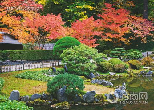 畅游日本园艺世界 感受一花一世界魅力
