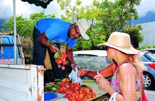 满眼尽是美景 留尼汪岛上的甜蜜生活