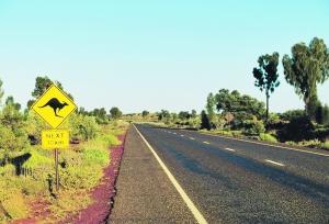 分享:澳洲自驾游的别样体验与心得