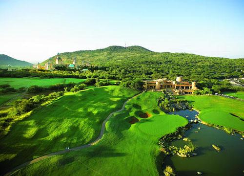 在旅游胜地南非 和鳄鱼一起打高尔夫