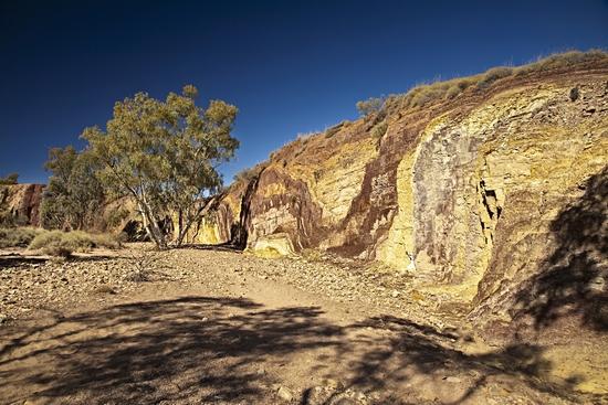澳大利亚 回归野性之旅