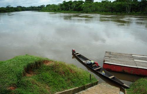 亚马逊密林:神秘流域的狂野本色(图)