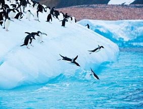 不可思议的南极洲:世界尽头的仙境