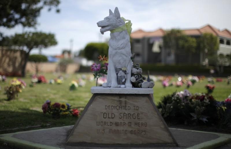 美国宠物公墓
