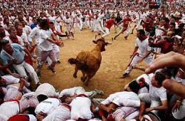 西班牙奔牛节惊险刺激