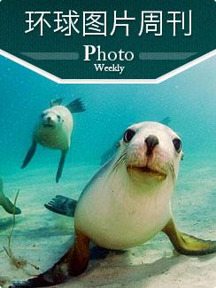 环球图片周刊 2012年第31周
