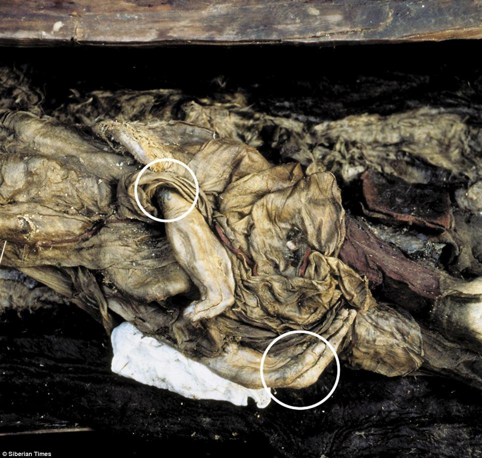 纹身 西伯利亚/俄罗斯现2500年前女尸(2/4)