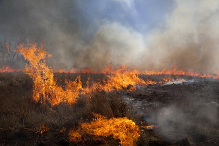 纪实摄影:燃烧的草原