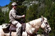 美军进山打仗还是得靠骡马