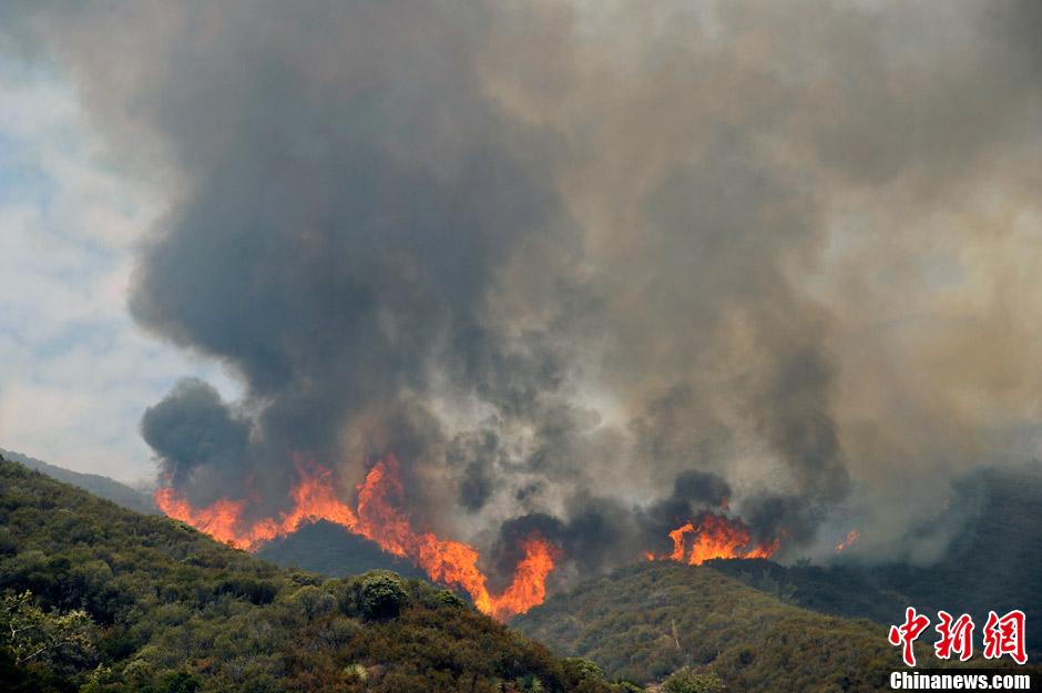 洛杉矶发生森林火灾