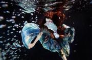 水下摄影:流动的优雅