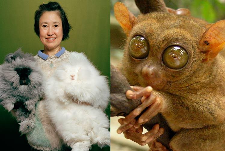 地球上最奇特的动物(组图)