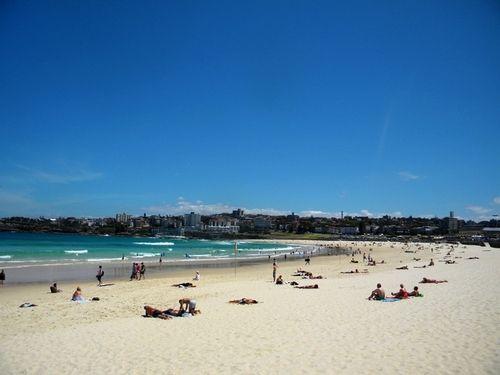 第一眼的邦迪海滩,平静有序,虽然是一处公共海滩,海水、沙质和环境都相当好