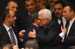 巴勒斯坦入联成功
