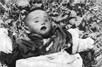 南京大屠杀史实全纪录