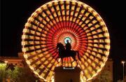 城市风光:路易十四灯火秀