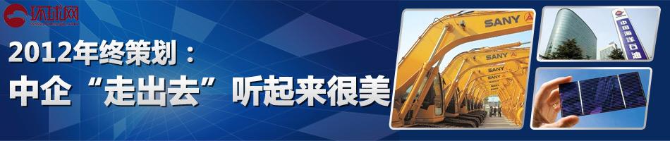 """环球网财经2012年终系列之:中企""""走出去""""听起来很美"""