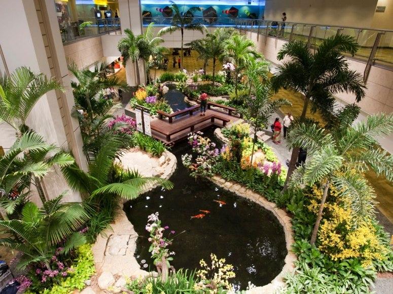 樟宜国际机场内部的露天游泳池和室内花园设计为整座机场增添了不图片