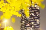 城市风光:城市黄色调