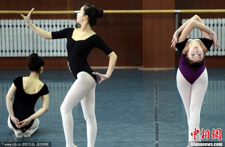 ,做着各种舞蹈技巧动作.月月 摄 图片来源:CFP视觉中国-十万艺图片