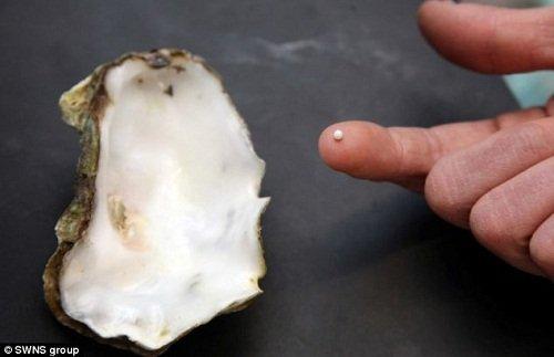 男子吃生蚝意外发现珍珠 概率仅百万分之一(图)
