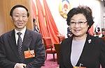 李海峰王家瑞出席会议