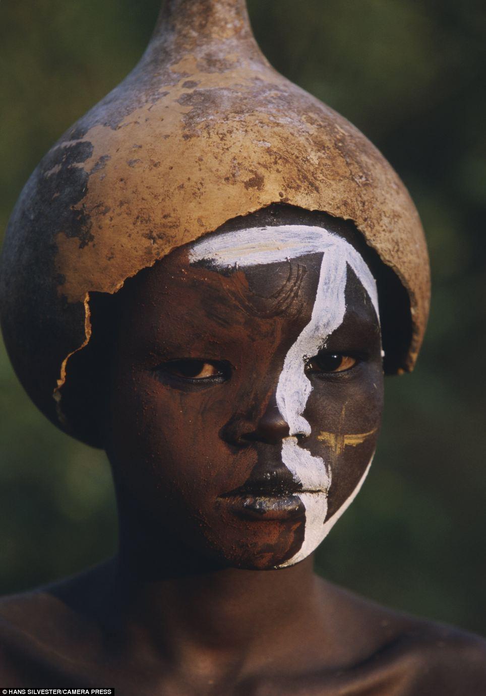 非洲亚马逊动物