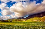 摄影师捕捉意法乡村如画风景
