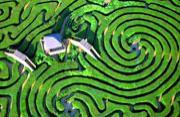 英国十大神秘古老的特色迷宫