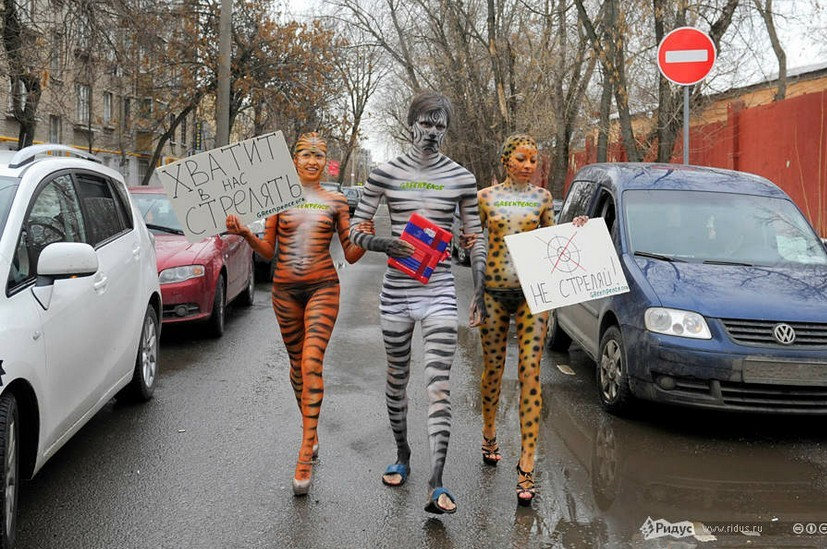 俄动物保护者全裸彩绘 化身虎豹吁停止狩猎