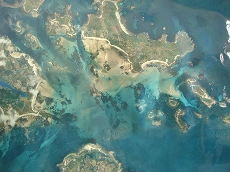 科学家称海平面上升将导致大量生物灭绝(图)