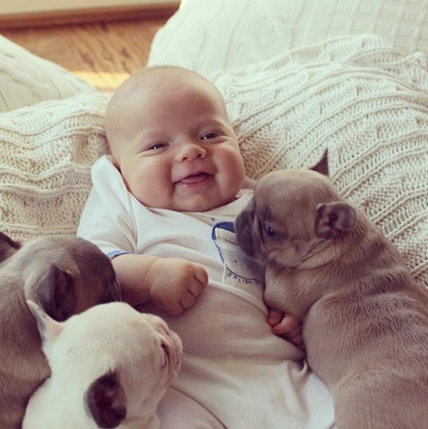 【转载】婴儿与小狗 - 六一儿童 - 陈家基《译海拾蚌》