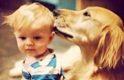 婴儿和宠物狗的成长故事