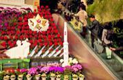 朝鲜举国欢庆金日成诞辰101周年