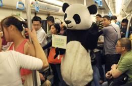 """成都""""大熊猫""""进地铁图片"""