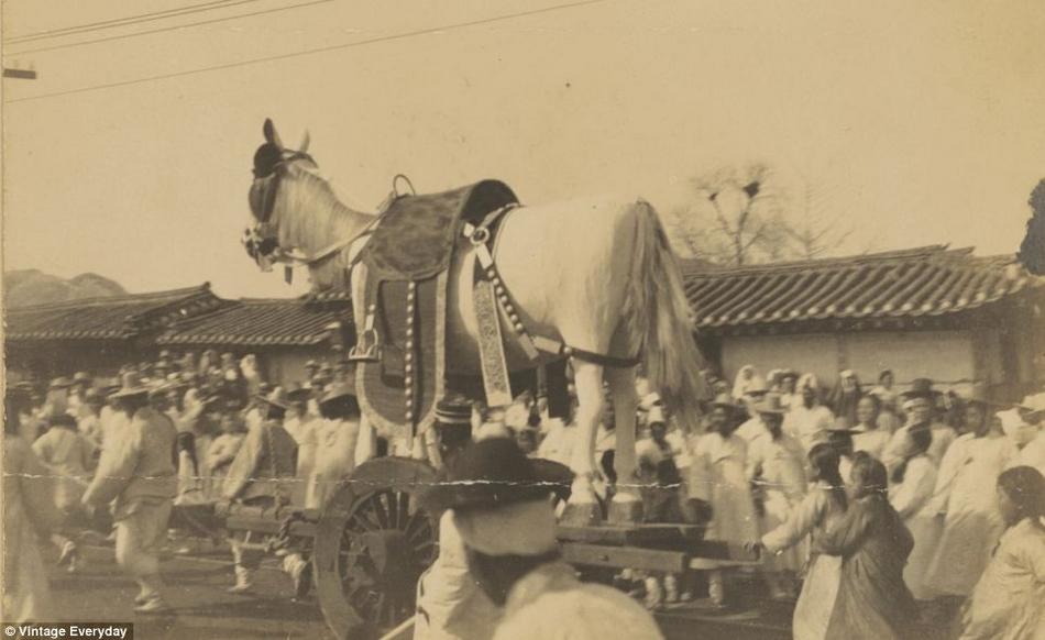 朝鲜 婚礼 朝鲜半岛/19世纪末20世纪初朝鲜老照片曝光(14/22)...