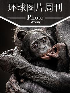 环球图片周刊 2013年第17周