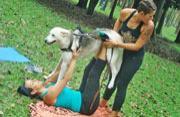 哥斯达黎加女子开设狗瑜伽受热捧