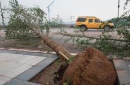 四川内江遭遇大风冰雹袭击 房屋被毁农田受损