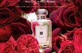祖马龙Red Rose红玫瑰香水