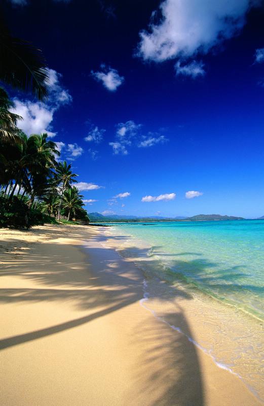 社会资讯_全美十大最美海滩名单出炉_旅游_环球网