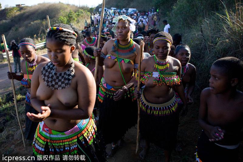 南非祖鲁族:男人战舞+处女露胸
