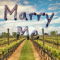 摄影师镜头上写字创意求婚
