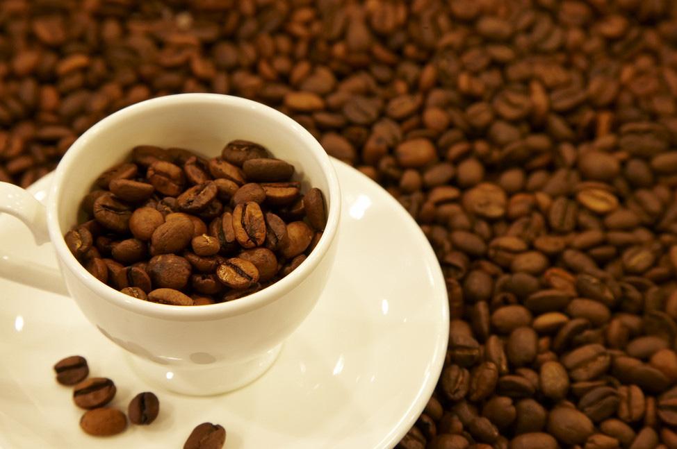 国内资讯_支持源自了解:社交媒体助力咖啡种植者_公益_环球网