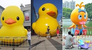 多个城市出现山寨版大黄鸭
