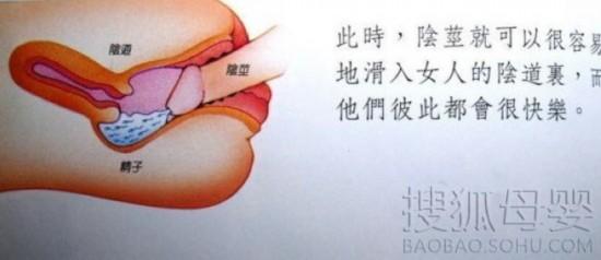 国外性教育图 - hubao.an - hubao.an的博客
