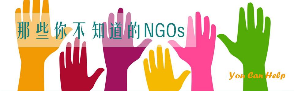 NGO那些事
