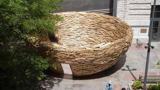 废旧木板搭建鸟巢休息室